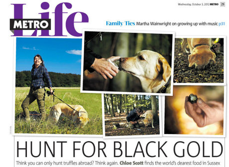 Metro UK - Truffle hunting in Sussex